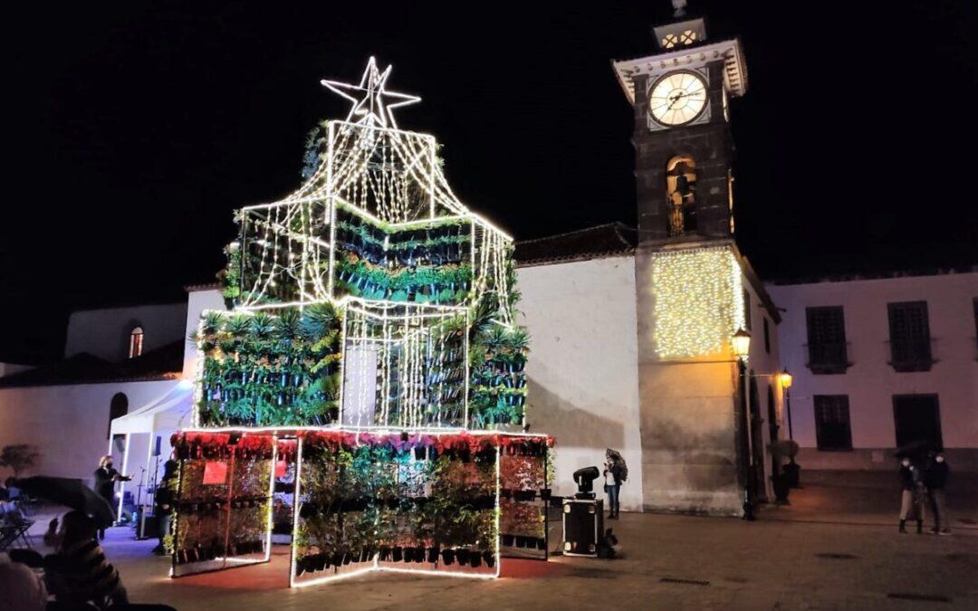 El mayor jardín vertical del mundo en un árbol de Navidad da la bienvenida a las fiestas en nuestro municipio