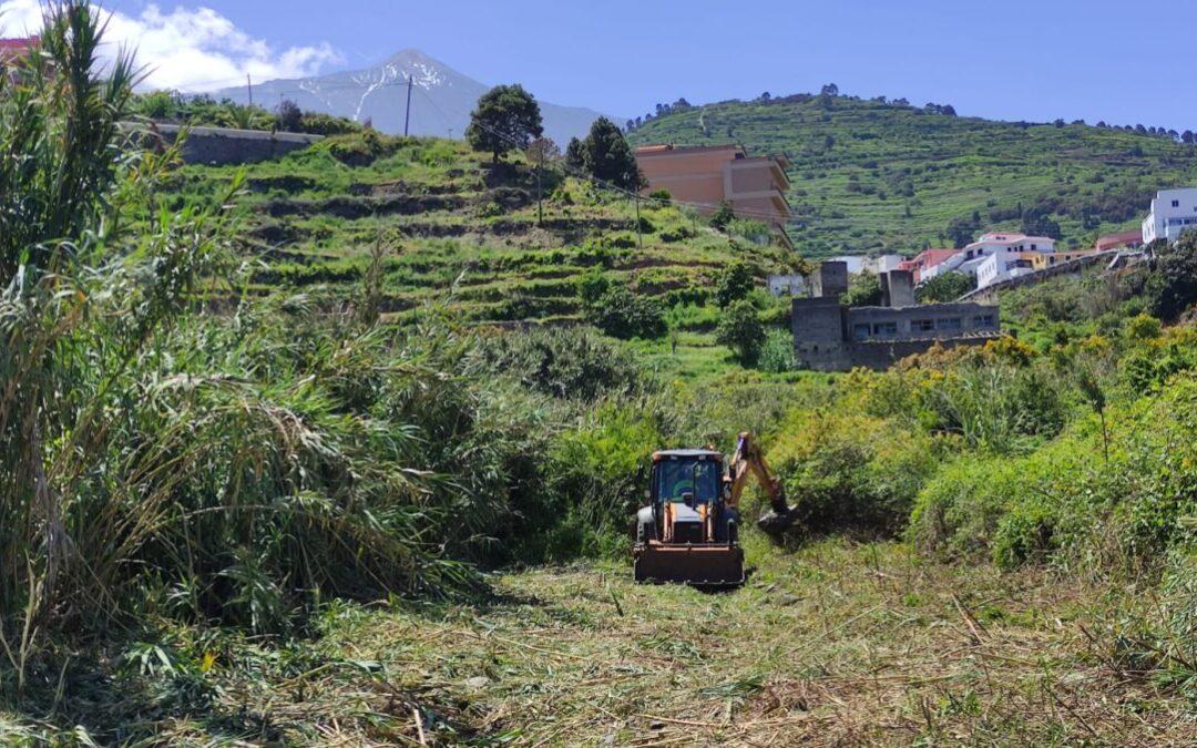 Trabajos de limpieza en el barranco de Los Palomos