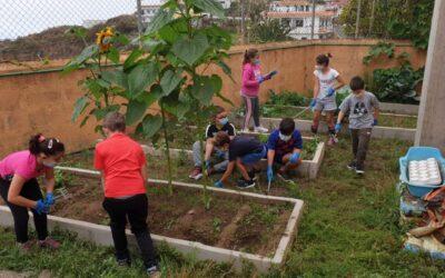 El Consistorio mantiene para el verano el «Campus en el Campo», la actividad que une ocio, educación y naturaleza