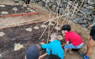 A sembrar y cuidar las huertas se aprende desde edades tempranas