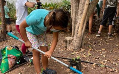 Jardinería adaptada a todas las edades