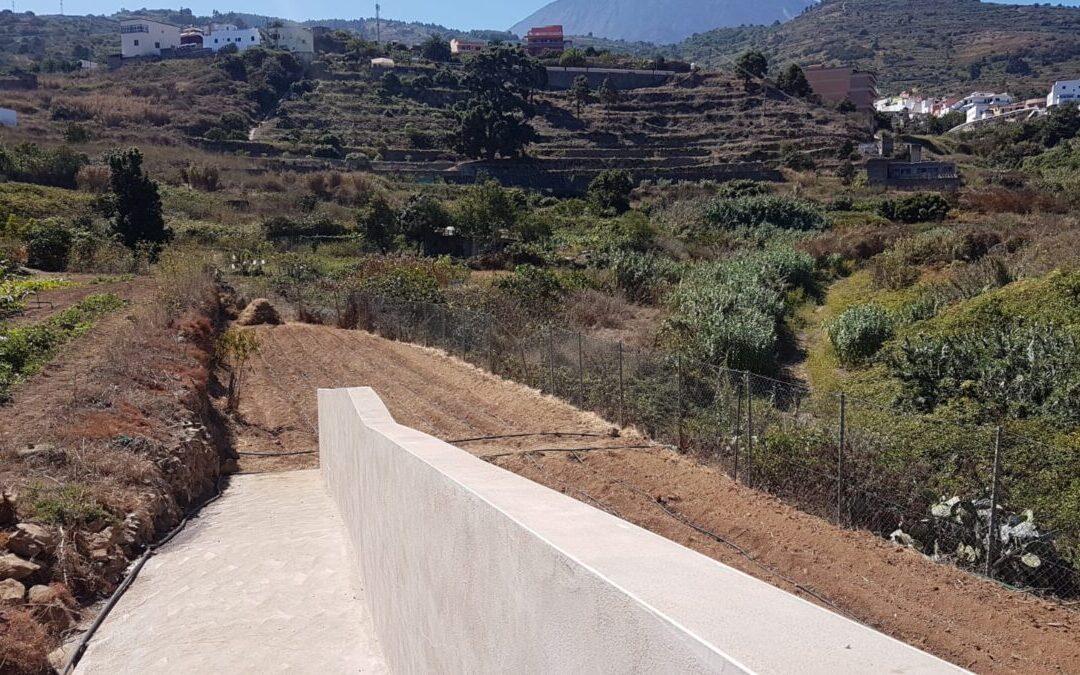 Comienza la siembra en el huerto escolar del Centro Ocupacional de San Juan de la Rambla